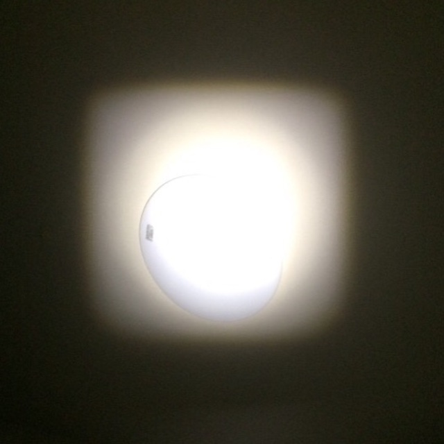 GENTOS(ジェントス)の【GENTOS(ジェントス) 閃 SG-325 LEDライト懐中電灯】 スポーツ/アウトドアのアウトドア(ライト/ランタン)の商品写真