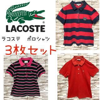 LACOSTE - ラコステ LACOSTE 半袖 ポロシャツ 3枚セット 刺繍ロゴ レディース