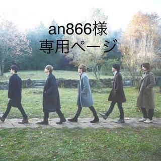 an866様専用ページ(バッグ)