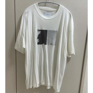 stein Tシャツ