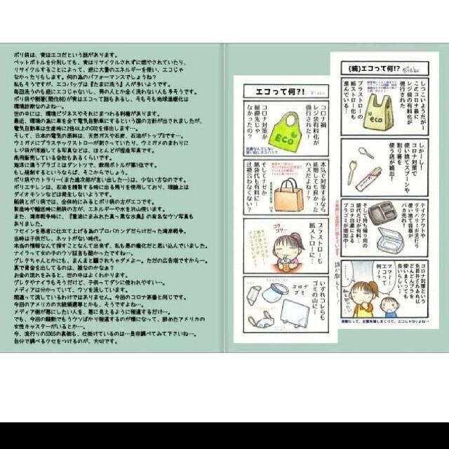 冊子&チラシ100枚セット エンタメ/ホビーの同人誌(一般)の商品写真