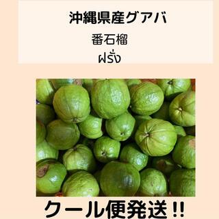 ⚠️限定⚠️沖縄県産グァバ白1kg クール便発送(フルーツ)