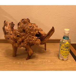 花台 木の置物 流木 木の根 骨董 オブジェ アンティーク 床の間 蔵出し(彫刻/オブジェ)