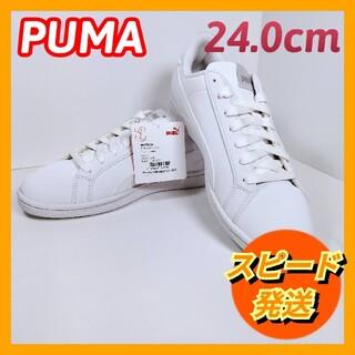 プーマ(PUMA)の【新品】プーマ スマッシュ バック  (24.0cm)(スニーカー)