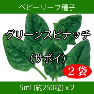 ベビーリーフ種子 B-40 グリーンスピナッチ(サボイ) 5ml x 2袋(野菜)