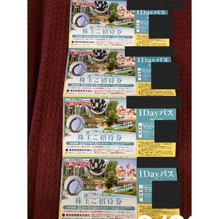 東京サマーランド 株主優待券 4枚(遊園地/テーマパーク)