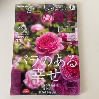 ご専用  趣味の園芸 2021年 05月号(専門誌)