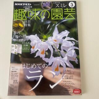 NHK 趣味の園芸 2021年 03月号(専門誌)
