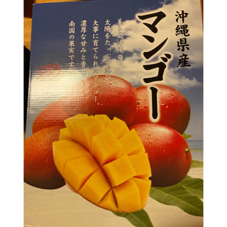 沖縄県産マンゴー(フルーツ)
