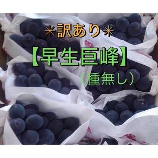 ✳︎訳あり✳︎ ぶどう【早生巨峰】2キロ箱