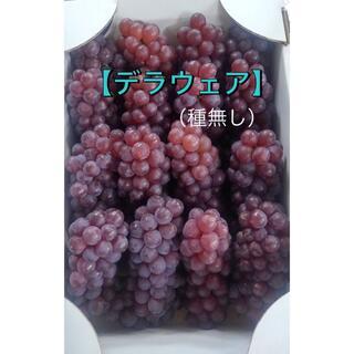 ぶどう【デラウェア】2キロ箱(フルーツ)