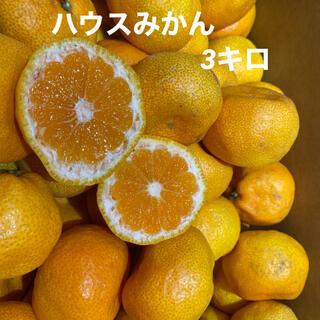 愛媛県産 ハウスみかん3キロ(フルーツ)