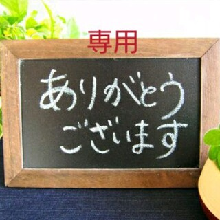 ミナペルホネン(mina perhonen)の『50』ミナペルホネンlookファブリックフレーム✨ハンドメイド✨クロッチピンク(生地/糸)