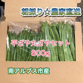 農家直送 スジなしインゲン豆 平ざや丸ざやセット800g