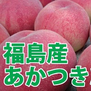 福島産 桃 あかつき 9~12玉 3kg 秀級品⑤ 7月26日から順次発送