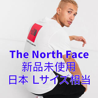 THE NORTH FACE - 【新品】ザノースフェイス The North Face Tシャツ