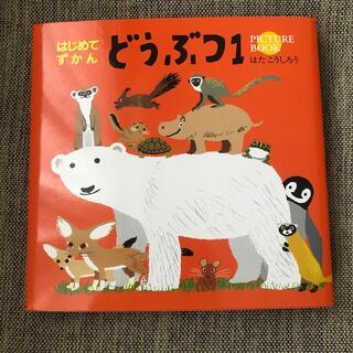 コクヨ(コクヨ)のはじめてずかん どうぶつ 1(絵本/児童書)
