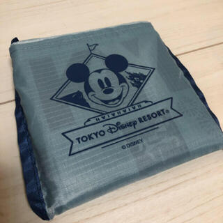 Disney - ディズニーリゾート ショッピングバッグ