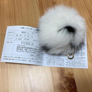 フルラ(Furla)の未使用美品! 正規品 フルラ ファーチャーム キーホルダー(キーホルダー)
