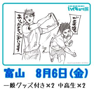 ハイキュー展 富山 チケット グッズ付き2枚 中高生2枚 4枚セット(声優/アニメ)