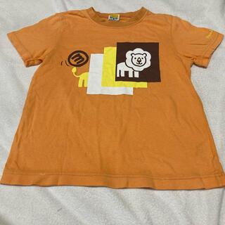 ムージョンジョン(mou jon jon)のムージョンジョン Tシャツ 動物 120(Tシャツ/カットソー)