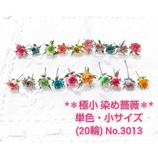 【即購入可】* 極小 * 染め薔薇 (単色・小サイズ)20輪 No.3013