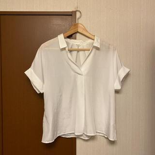 テチチ(Techichi)の☆テチチテラス シャツ☆(シャツ/ブラウス(半袖/袖なし))