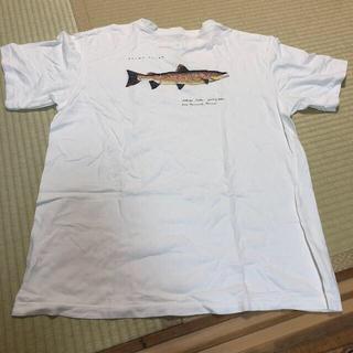 patagonia - パタゴニア Tシャツ 半袖 M
