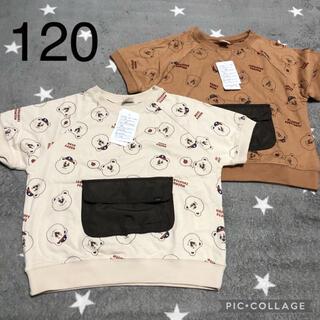 フタフタ(futafuta)のfutafuta 新品未使用 フタクマ Tシャツセット(Tシャツ/カットソー)