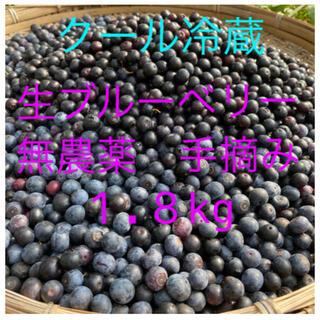 💝オリンピック記念価格生ブルーベリー1.8kg クール冷蔵送料込み(フルーツ)