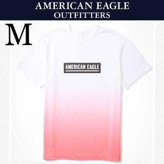 アメリカンイーグル(American Eagle)の新品タグ付き☆アメリカンイーグル半袖とシャツMホリスターアバクロンビー&フィッチ(Tシャツ/カットソー(半袖/袖なし))