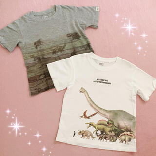 ユニクロ(UNIQLO)の☆ユニクロ☆キッズ☆地層柄&恐竜柄半袖Tシャツ2点セット☆110サイズ(Tシャツ/カットソー)