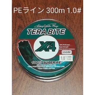 TERABAIT PEライン(4本編み),300m巻,1.0#(釣り糸/ライン)