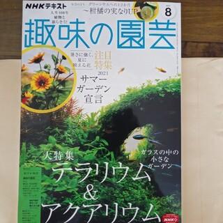 NHK 趣味の園芸 2021年 08月号(専門誌)