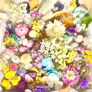 ドライフラワー花材セットNo.215⁑カラフルバラエティー(ドライフラワー)