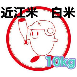 【送料無料】近江のお米 10kg(10kg×1本)