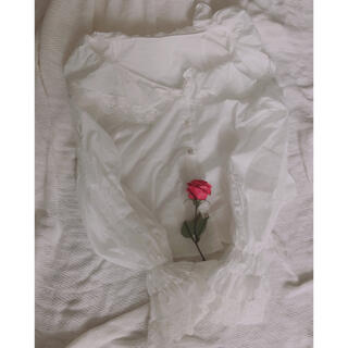 flower - フリル レース 襟 袖 ホワイトブラウス