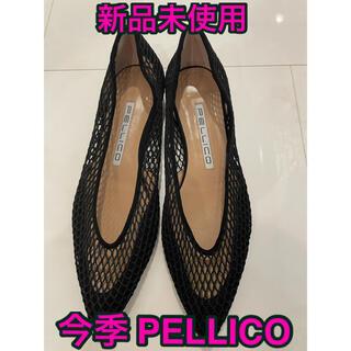PELLICO - 【新品未使用】今季PELLICO(ペリーコ)/ANIMAメッシュフラットパンプス