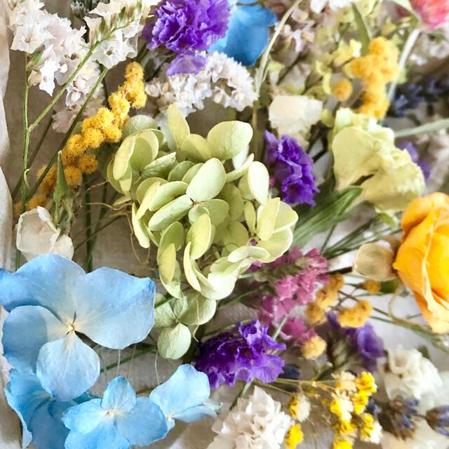 ドライフラワー花材セットNo.211⁑バラ❇︎カーネーション❇︎アナベル ハンドメイドのフラワー/ガーデン(ドライフラワー)の商品写真