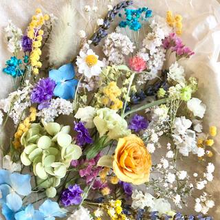 ドライフラワー花材セットNo.211⁑バラ❇︎カーネーション❇︎アナベル