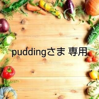 puddingさま 専用  乾燥野菜パウダー & ドライフルーツおまとめ(野菜)