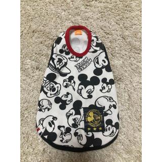 ミッキーマウス(ミッキーマウス)のミッキーマウス 犬服(ペット服/アクセサリー)