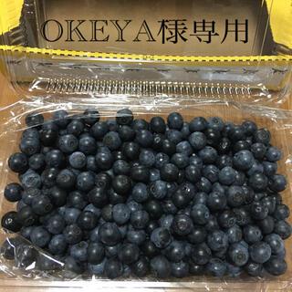 ブルーベリー500g御予約専用品☆(フルーツ)