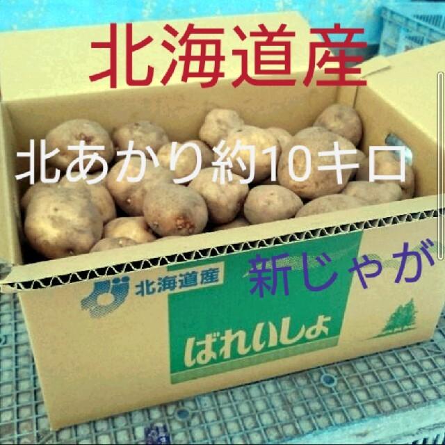 北海道産北あかり約10キロ 食品/飲料/酒の食品(野菜)の商品写真