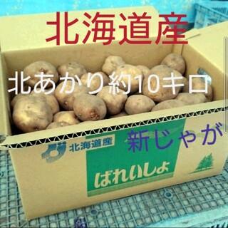 北海道産北あかり約10キロ