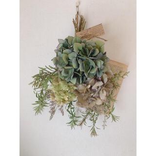 ドライフラワー カラフル三種の紫陽花とリューカデンドロンのスワッグ