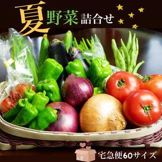 【数量限定】夏野菜8種詰合せ★宅急便60