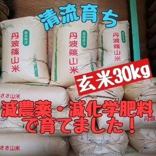 清流育ち 兵庫県丹波篠山米 玄米30kg(減農薬,減化学肥料栽培)