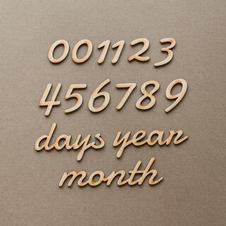 木製レターバナー 月齢フォトセットE /ニューボーン 100日祝 マンスリー