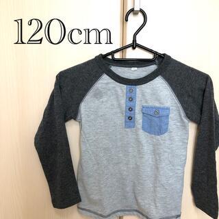 AEON - 240.オーガニックコットン ロングTシャツ
